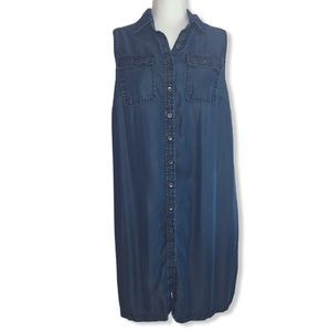 Liz Lange Maternity Denim Shirt Sleeve Dress